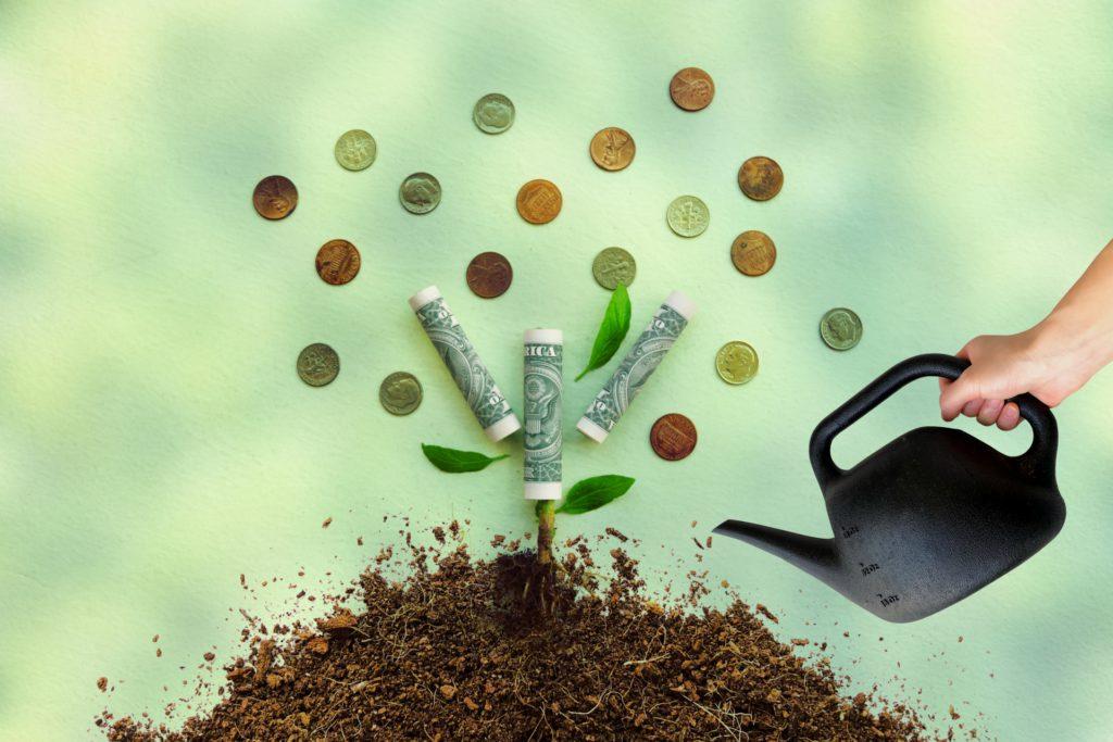 お金のなる木イメージ
